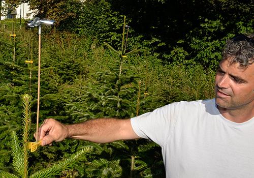 Windräder zur Abwehr von Vögeln